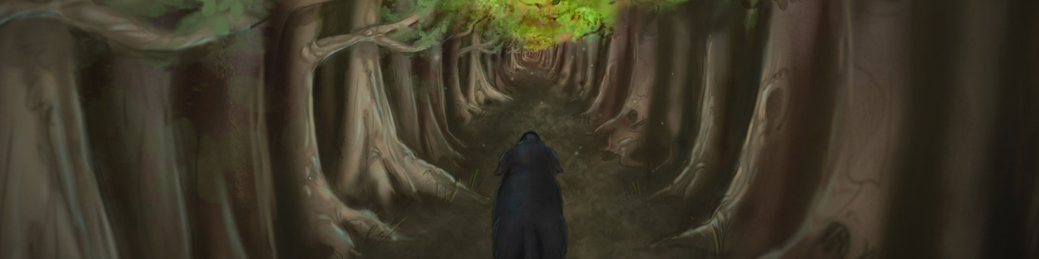 Emily's Forest feature image